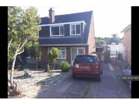 3 bedroom house in Rivermead Road, Exeter, EX2 (3 bed)