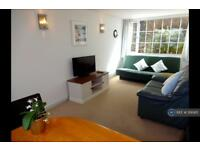 1 bedroom flat in Meadfoot Road, Torquay, TQ1 (1 bed)