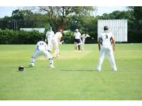 **Want to play cricket in South London?** Kingstonian Cricket Club looking for players