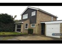 3 bedroom house in Silver Drive, Camberley, GU16 (3 bed)