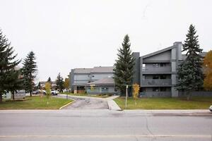 Stunning Two Bedroom in Amazing Location! * ONE MONTH FREE! * Regina Regina Area image 12