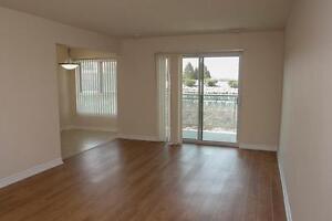 Large 2 Bedroom - Dishwasher, A/C and more! Cambridge Kitchener Area image 3