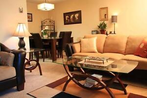 Beautiful bachelor apartment for rent!