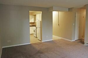 Windsor 1 Bedroom Apartment for Rent: Secure, utilities included