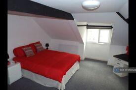 1 bedroom flat in Norfolk Street, Sunderland, SR1 (1 bed) (#1069529)