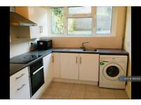2 bedroom house in Park Place, Brynmill, Swansea, SA2 (2 bed) (#988266)