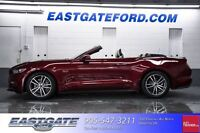 2015 Ford Mustang GT Premium Ford Executive Driven