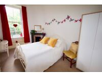 Double Room in garden flat/Private Living space and bathroom