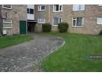 2 bedroom flat in Burghfield Road, Reading, RG30 (2 bed)