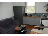 1 bedroom flat in Shirebrook Rd, Sheffield, S8 (1 bed)