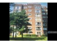 2 bedroom flat in Broom Park, Teddington, TW11 (2 bed)