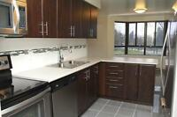 Executive 2 Bedroom 4 Appliances, 1.5 baths, 1400 sqft RENOVATED