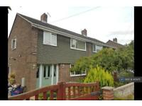 3 bedroom house in Wordsworth Road, Barnsley, S71 (3 bed)