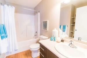 Pet friendly Two Bedroom Apartment w in-suite laundry, Beaumont Edmonton Edmonton Area image 5