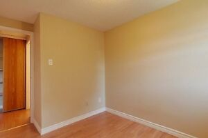 Ideal student rental! Great for groups of 3 and 4! Kitchener / Waterloo Kitchener Area image 9