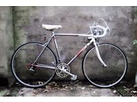 FALCON PROCIRCUIT, Reynolds 501, vintage racer racing road bike, 21.5 inch small size, 14 speed