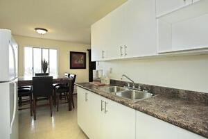 Updated One Bedroom at Huron/Highbury - Available March London Ontario image 5
