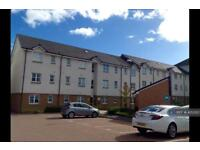 3 bedroom flat in Sun Gardens, Thornaby, Stockton-On-Tees, TS17 (3 bed)