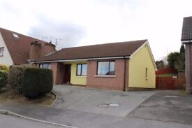 Modern detached 3 bedroom bungalow to let - Dublin Road Newry