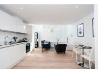 +STUNNING 1 BED DUPLEX APARTMENT IN THE BRAND NEW ROYAL QUAY, LIMEHOUSE/CANARY WHARF/BOW E14