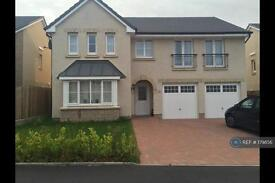 5 bedroom house in Barnhill Drive, Aberdeen, AB12 (5 bed)