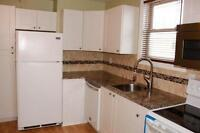 3 bedroom apt suitable for the executive
