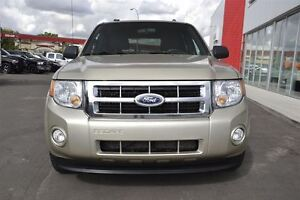 2011 Ford Escape XLT | Cruise Control | Lots of Cargo Space! | Edmonton Edmonton Area image 2