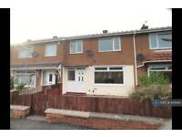 3 bedroom house in Tithe Barn Road, Stockton-On-Tees, TS19 (3 bed)