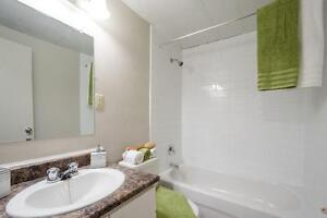 Updated One Bedroom w/Parking for Jan: Ideal Downtown Location London Ontario image 7