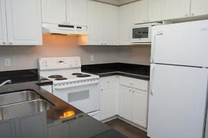 Spacious Apts for Western Students! Parking & Internet Included! London Ontario image 10