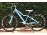"Giant Areva 24"" bike"