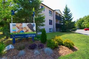 51 & 59 Campbell: Apartment for rent in Stratford Stratford Kitchener Area image 1