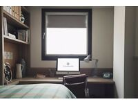 fully furnished Studio to rent, including weekly cleaning, water, electrical bills....