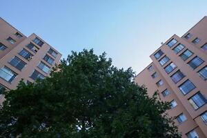 Special Offer: One Month Rent Free on 1 Bedroom + Den London Ontario image 3