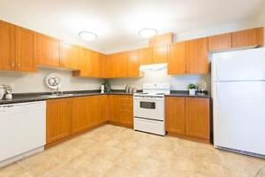 Pet friendly Two Bedroom Apartment w insuite laundry SE Edmonton Edmonton Edmonton Area image 4