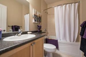 Modern Two Bedroom - Downtown - Best Building Amenities! London Ontario image 9