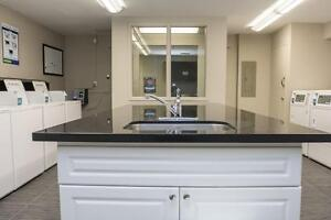 Western & Fanshawe Student Apartments! WIFI Included! London Ontario image 11