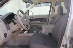 2009 Ford Escape XLT Automatic 3.0L Windsor Region Ontario image 9