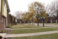 Windsor 3 Bedroom Townhouse Townhome for Rent: Basement,...