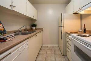 Modern Renovated One Bedroom in Strathroy - New Kitchens! London Ontario image 6