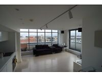 manor mill 2 bed 2 bath penthouse fully furnished with 1 secure parking on site