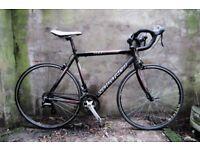 SARACEN TOUR 2. 21.5 inch, 54.5 cm. Racer racing road bike, 16 speed