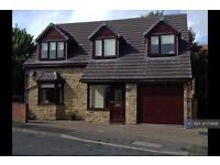4 bedroom house in Kyo Road, Stanley, DH9 (4 bed)