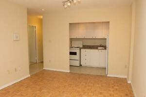 BACHELOR Downtown T.O,  5 minute walk to Sherbourne station!