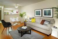 Brampton Towers - Beautiful Large One Bedroom Apartments in...