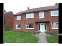1 bedroom flat in Brackenfield Road, Durham, DH1 (1 bed)