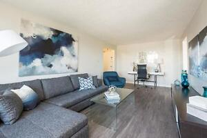 Newly Renovated One Bedroom in Kitchener - New Kitchen & Floors!