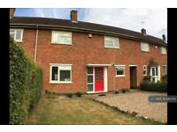 4 bedroom house in New Ashby Road, Loughborough, LE11 (4 bed)