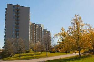 1 Bdrm available at 501 Wilkins Street, London