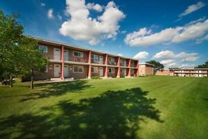 RENT A 3 BEDROOM FOR THE PRICE OF 2 - Family Townhome Close... Edmonton Edmonton Area image 8